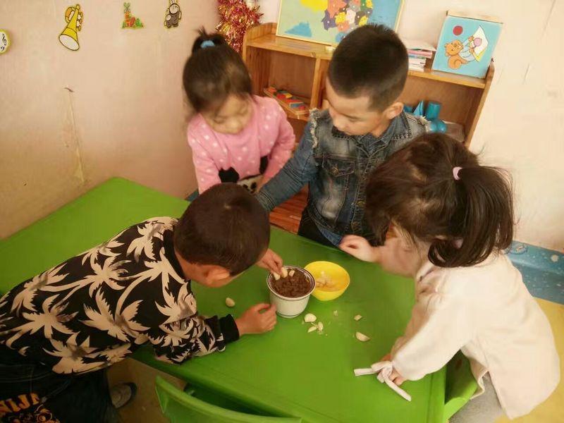 """太原市风帆幼儿园开展""""种植""""大蒜活动"""