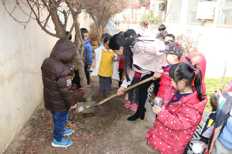 拥抱春天 感受绿色-日照港第二幼儿园