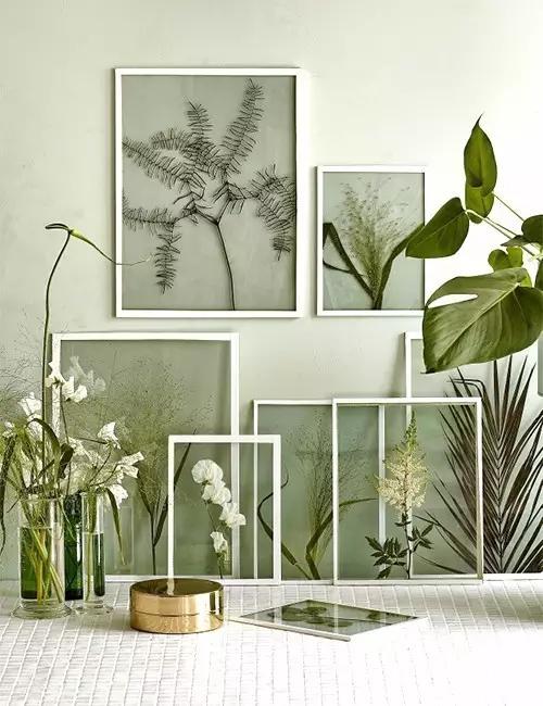 用丙烯颜料,给树枝涂鸦 摆放好造型,稍加装饰下, 挂在墙上, 把树枝